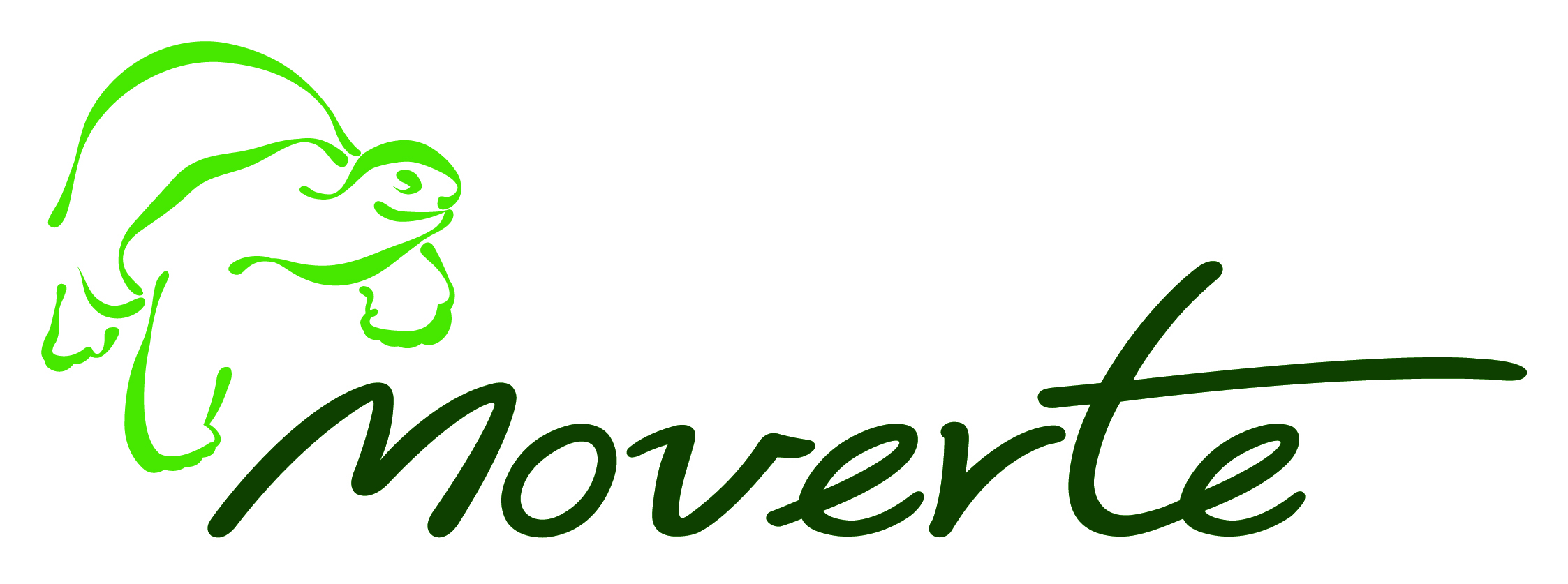 ORTOPEDIA MOVERTE